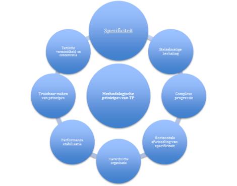 Methodologische principes van tactische periodisering (aangepast op basis van Delgado-Bordonau & Mendez-Villanueva, 2012; en Tamarit, 2013, 2015).